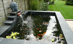 ACH Landscapes Garden Ponds